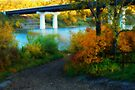Prospectors Point  - North Saskatchewan River by Roxanne Persson