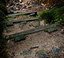 Step Down by Shane Viper