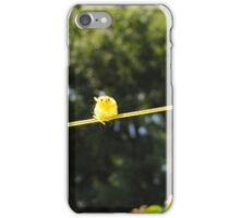 Perching Chick iPhone Case/Skin