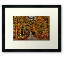 Leaves Are Falling Allready Framed Print