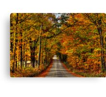Leaves Are Falling Allready Canvas Print