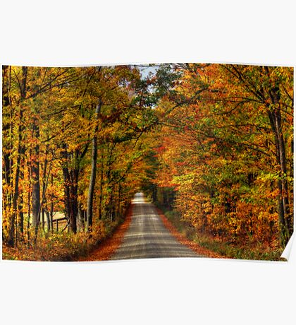 Leaves Are Falling Allready Poster