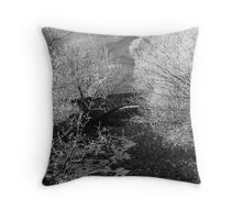 Middlefell Bridge, Great Langdale Throw Pillow