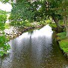 Alabama River 2 by nancy dixon
