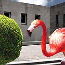 BIG RED JAILBIRD by Paul Quixote Alleyne
