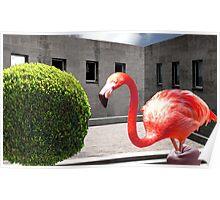 BIG RED JAILBIRD Poster