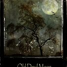 Old Devil Moon by © Kira Bodensted