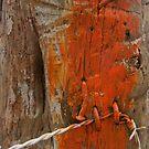 Trail Marker by elasita