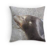 Sea Lion Sleeping Throw Pillow