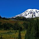 Mt. Rainier and Paradise Inn by Debbie Stika