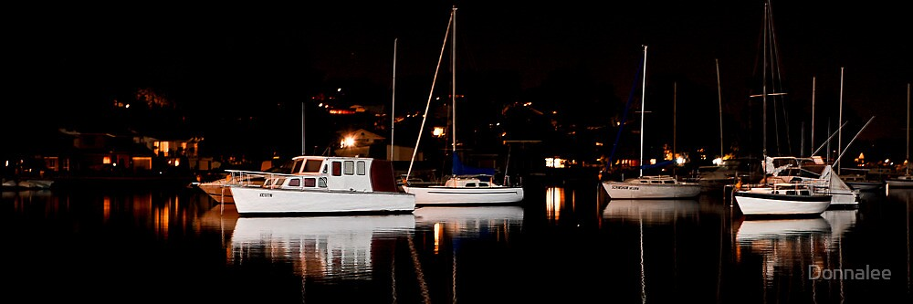 Ships in the night by Donnalee