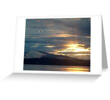 Landing at Sunset Greeting Card