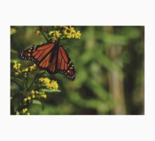 Monarch Butterfly on Goldenrod, As Is T-Shirt