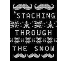 'Staching Through The Snow Photographic Print