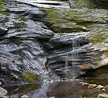 Setrock Creek Falls by Alison Simpson