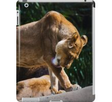 Lion Bath iPad Case/Skin