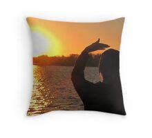 THUNDERBIRD WOMAN  &  FATHER SUN  Throw Pillow