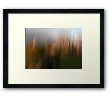 Looking Out My Back Door Framed Print