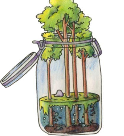Marsh Terrarium Sticker