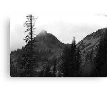 Dead Tree at Chinook Canvas Print