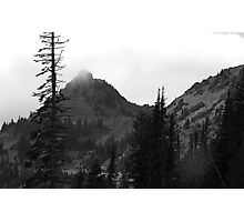 Dead Tree at Chinook Photographic Print