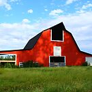 Red Barn & Shadows by Ruth Lambert