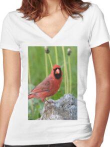 Cardinal Women's Fitted V-Neck T-Shirt