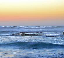 Swami's Reef by Bindi   Morrish