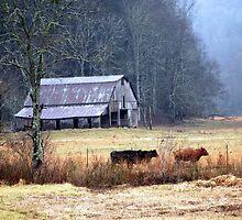 Mountain Farm by Mattie Bryant
