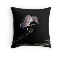 Juvenile Black-Crowned Night Heron Throw Pillow