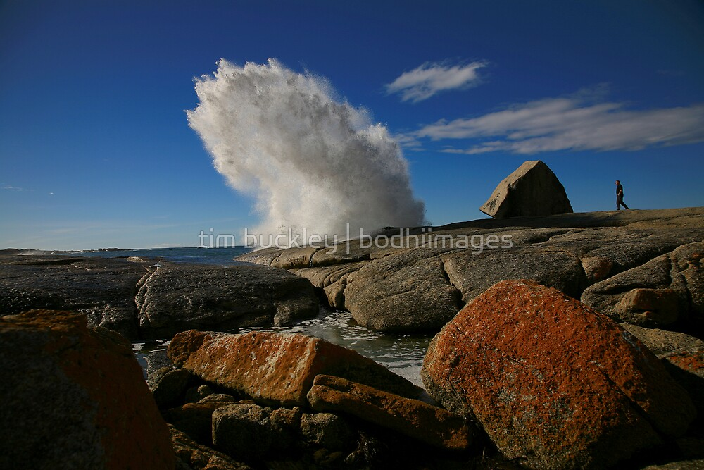 coast line blowhole. bicheno, tasmania by tim buckley | bodhiimages
