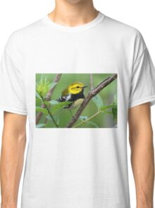 Black-throated Green Warbler Classic T-Shirt