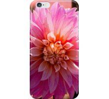 Sunlit Dahlia iPhone Case/Skin