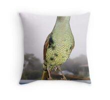 Bower Bird Throw Pillow