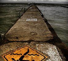 Tidal Pool - Warning! by clydeessex