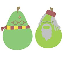 Peary Potter and Dumblepear Photographic Print