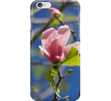 Pink Italian Flower  iPhone Case/Skin