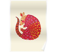 The Ethnic Armadillo Poster