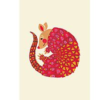 The Ethnic Armadillo Photographic Print