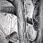 up a gum tree by Lynn Hughes
