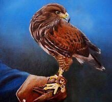 Bird in hand by Lynn Hughes