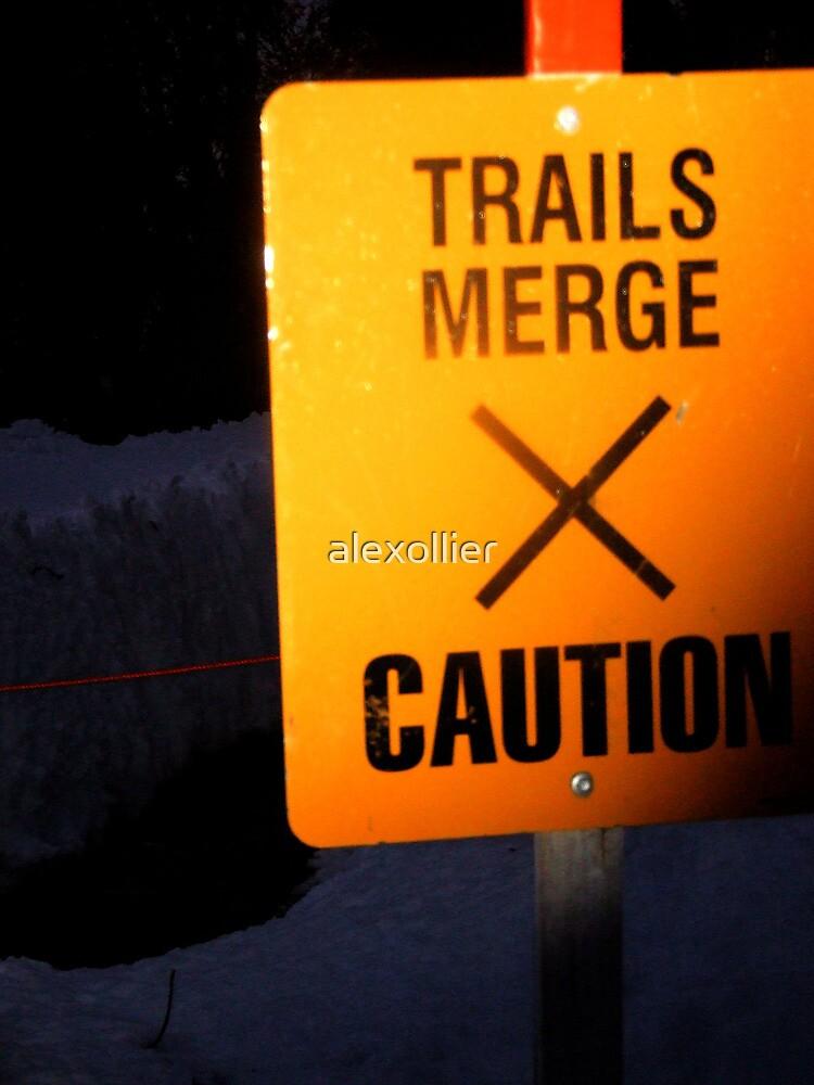 Beware Of The Creek by alexollier