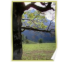 A Tree With A View... Poster