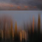 Looking Out My Back Door - Diptych by Kitsmumma