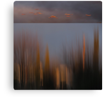 Looking Out My Back Door - Diptych Canvas Print