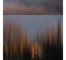 Looking Out My Back Door - Diptych Photographic Print