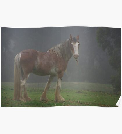 Mountain Clydesdale Poster