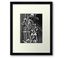Steel Roses Framed Print