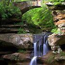 Springtime at Upper Falls by Rachel Stickney