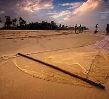 The Net by Vikram Franklin